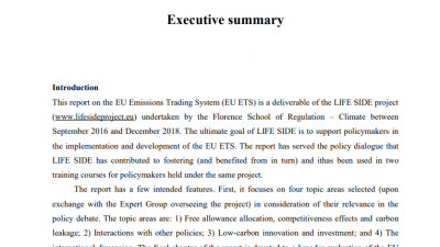 Permalink to:Executive Summary of the EU ETS Assessment report